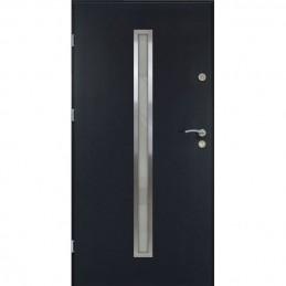 Lauko durys T55 INOX  56mm...